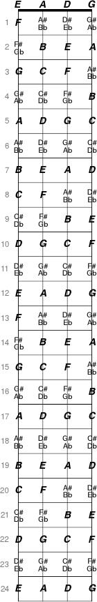 Bass Notes On Fretboard : home total guitar and bass ~ Hamham.info Haus und Dekorationen