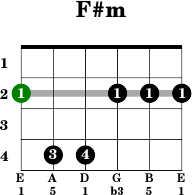 Learning to Play Guitar Chords Scales and Solos  English