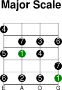 3thstring major intervals scale